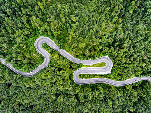 森林生态系统的科学管理