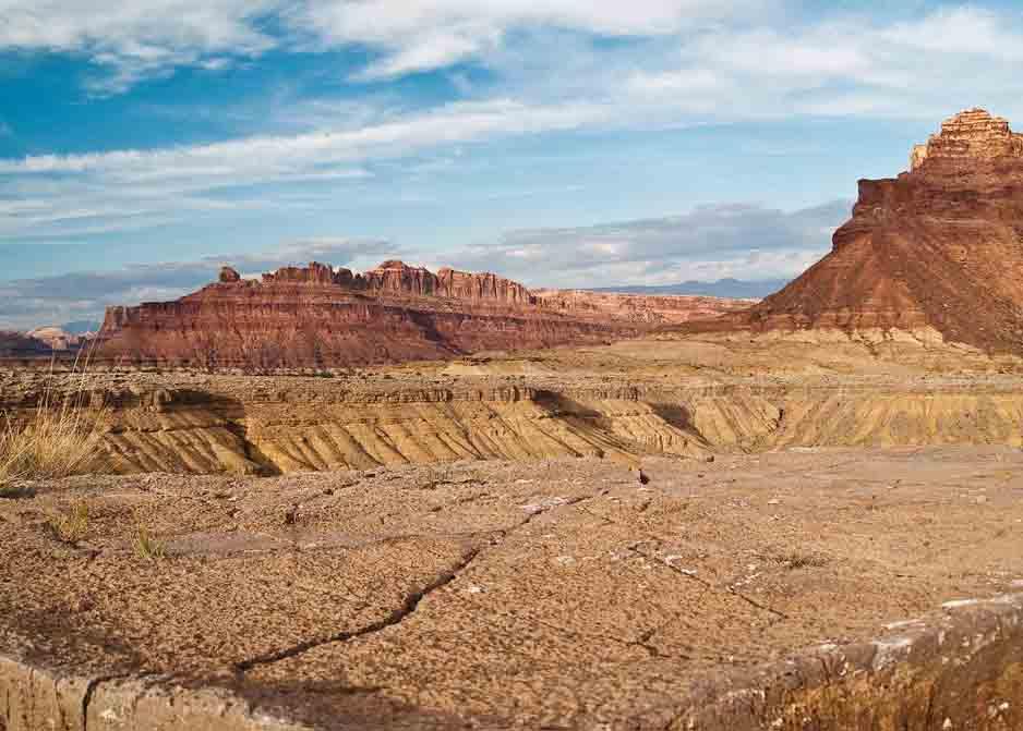 荒漠生态系统的分布、基本特征