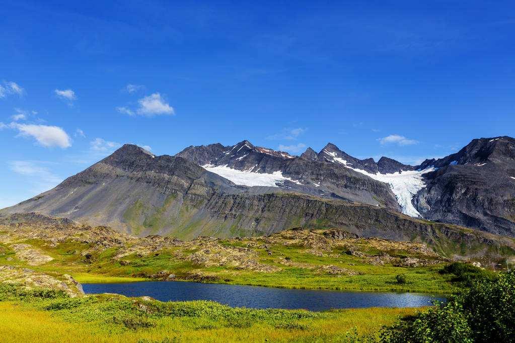 苔原生态系统——苔原的保护与利用