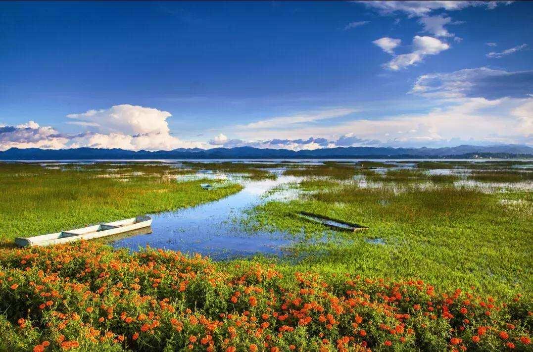 湿地生态系统主要服务功益
