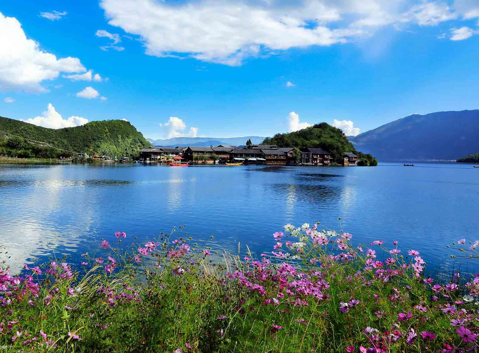 水域生态系统——淡水生态系统