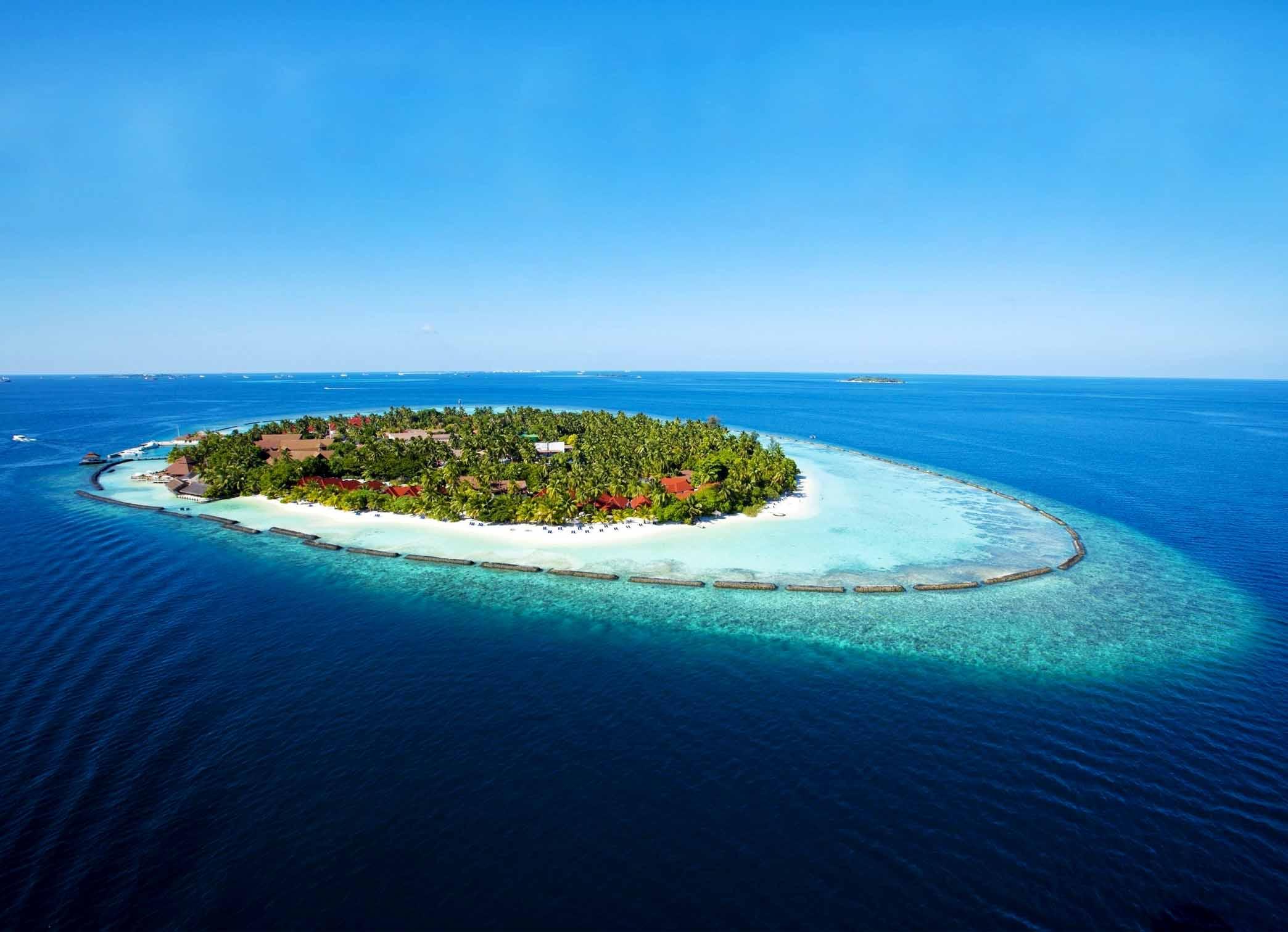 水域生态系统——海洋生态系统