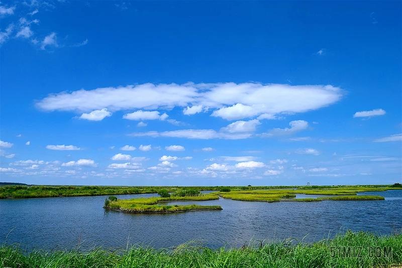 生态系统的发育和进化——生态系统发育的特点