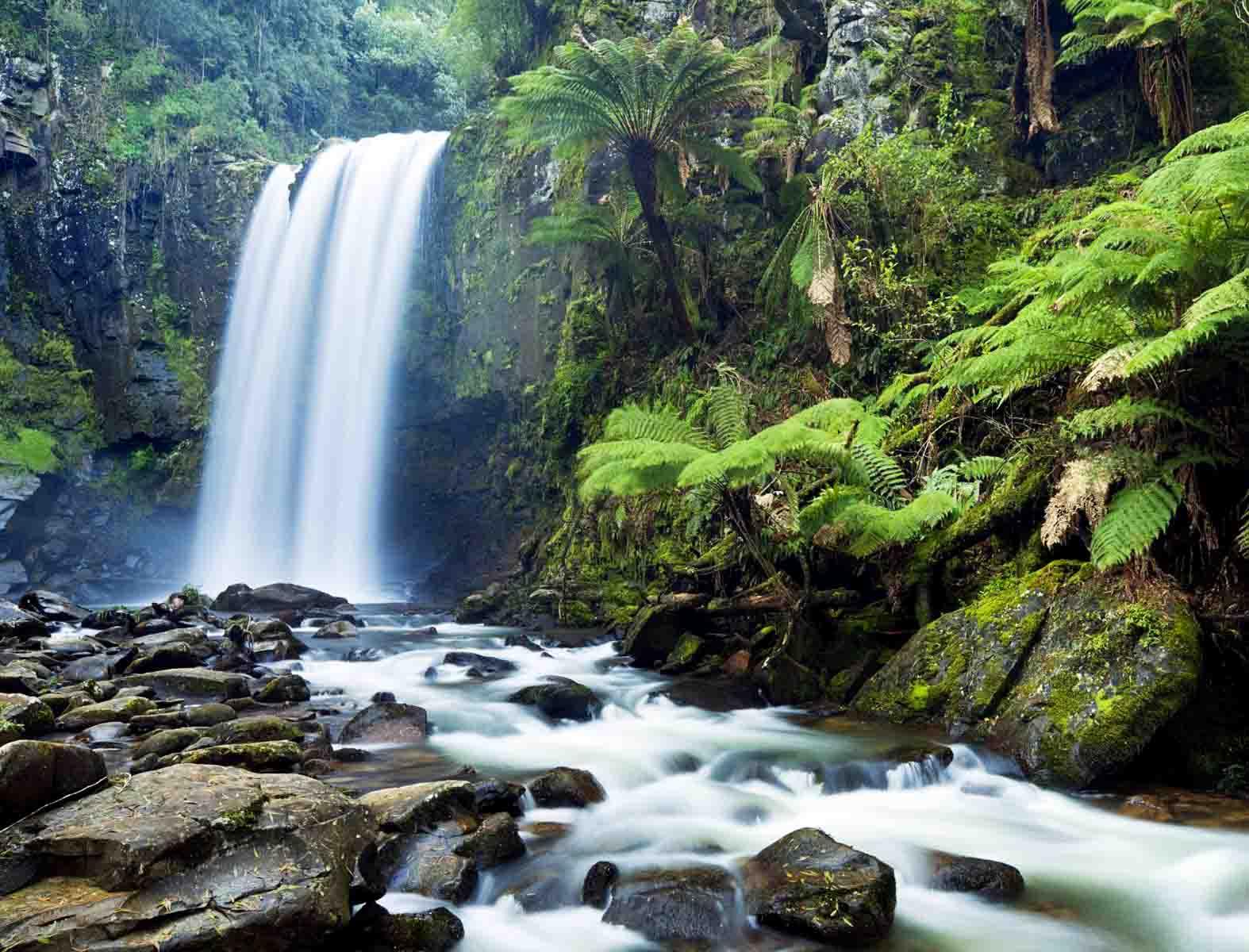 生态系统健康和管理——生态系统健康是生态系统管理的目标