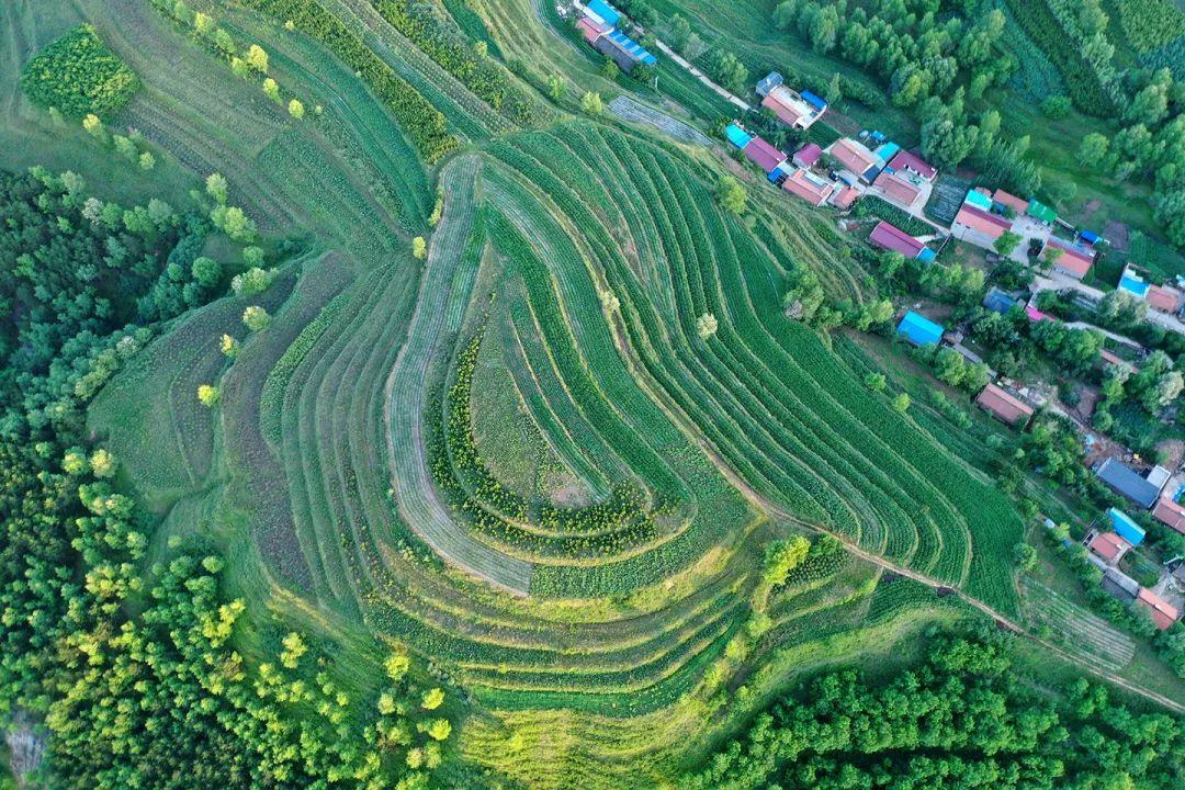 生态系统健康和管理——加强生态技术和工程管理,促进生态系统健康发展